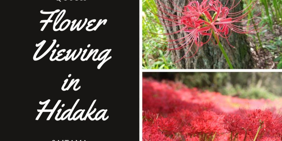 things to do in saitama, higanbana flower viewing