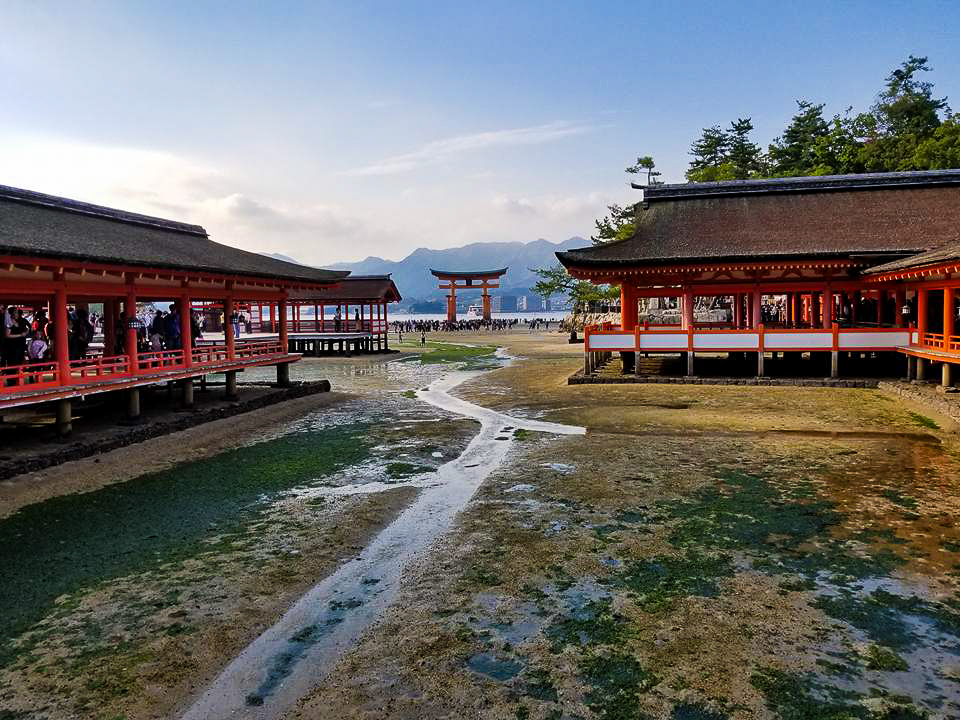 Itsukushima Shrine at low tide